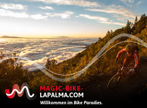 Magic Bike La Palma Webseite
